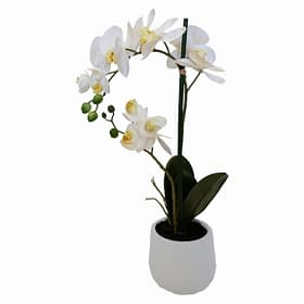 Artificial Real Touch White Orchid With White Pot - 2 spray