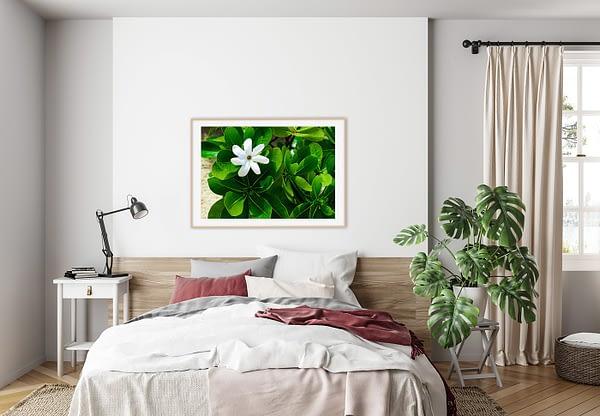 White Floral Framed Art Print NZ