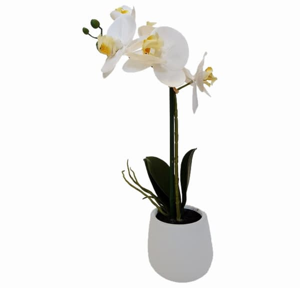 Artificial Real Touch White Orchid With White Pot - 1 spray