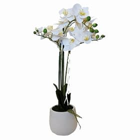 Artificial Real Touch White Orchid With White Pot - 3 spray