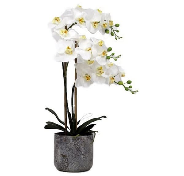 Artificial Real Touch White Orchid With Stone Pot - 3 spray